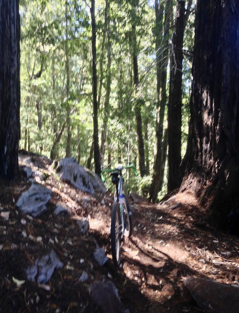 Sept 14-16, 2018 Weekend Ride and Trail Conditions Report-fullsizeoutput_3a1.jpg