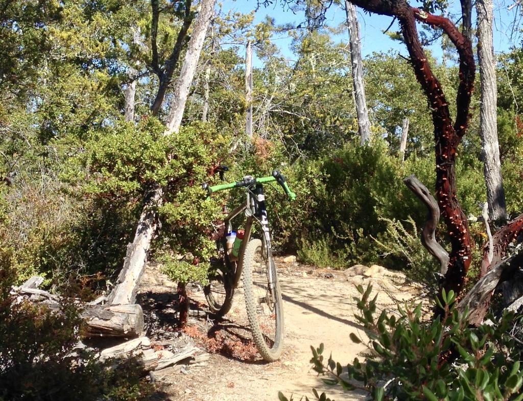 Post Your Gravel Bike Pictures-fullsizeoutput_3a4.jpg