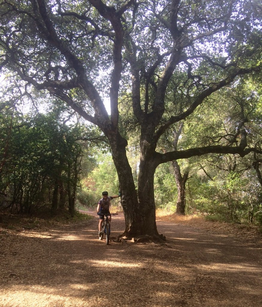 2019 Kennedy Trail ... 25 and 50 under Summer Judgment-fullsizerender-186.jpg