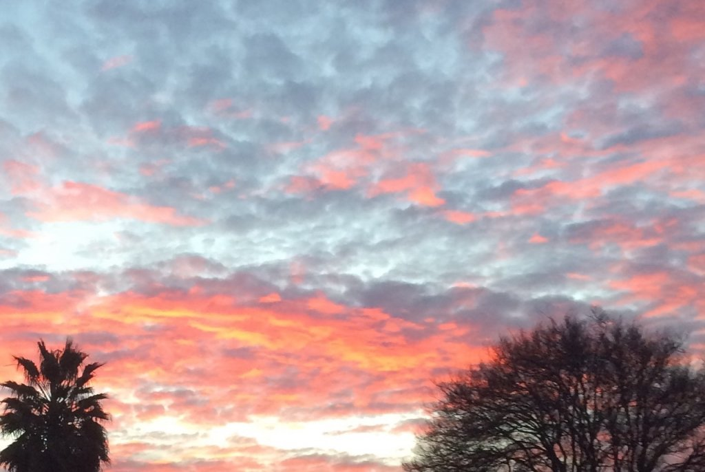 Sunrise or sunset gallery-fullsizerender-32.jpg