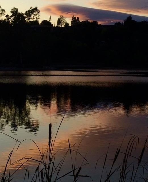 Sunrise or sunset gallery-fullsizerender-76.jpg