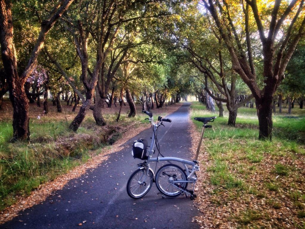 Fat Biking and health-fullsizerender.jpg