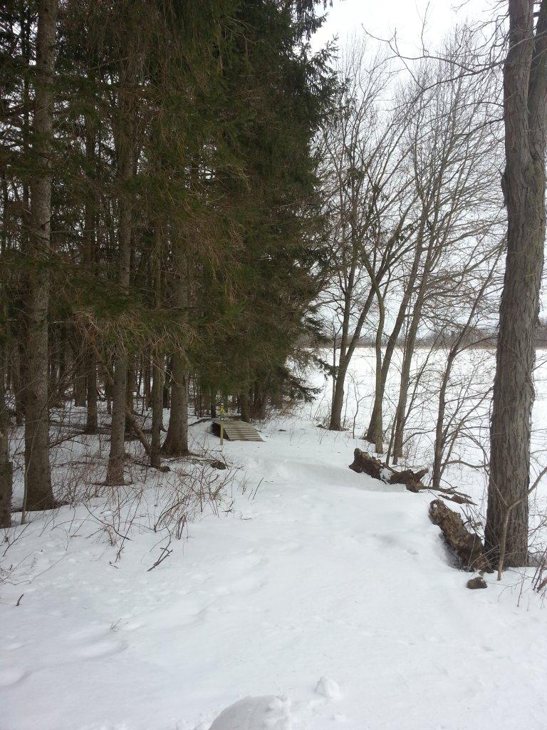 Snow Plowing Trails-funk1.jpg