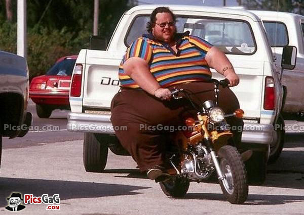Talking about I have a cerTain set of Skills - T.I.T.S. Night ride - Ironworks-funny-fat-man-bike-funny.jpg