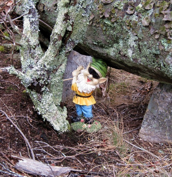 Adventures with the Pisgah Gnome-g-011012-3.jpg