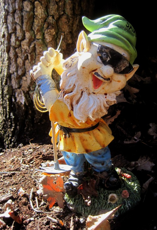 Adventures with the Pisgah Gnome-g-020212-1.jpg