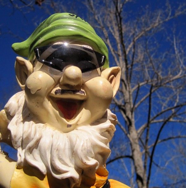 Adventures with the Pisgah Gnome-g-shades-1.jpg