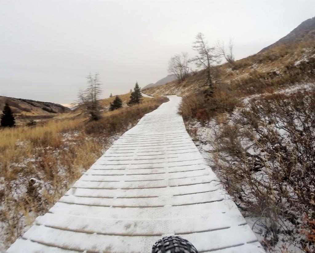 Daily Alaska mtb picture thread-g0064183s.jpg