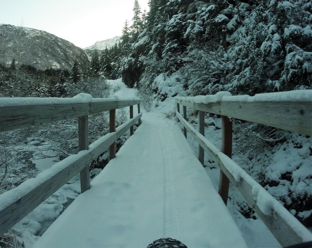bike +  bridge pics-g0067993.jpg
