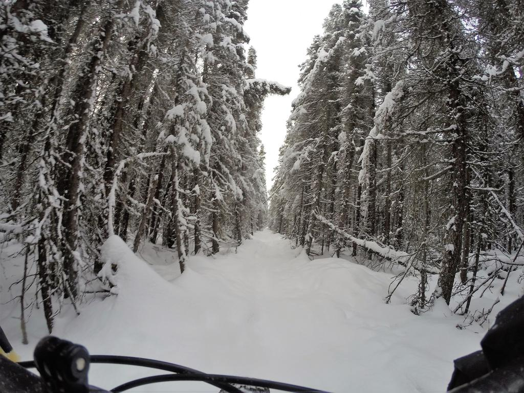 What is best time for riding in Alaska?-g0098637s.jpg