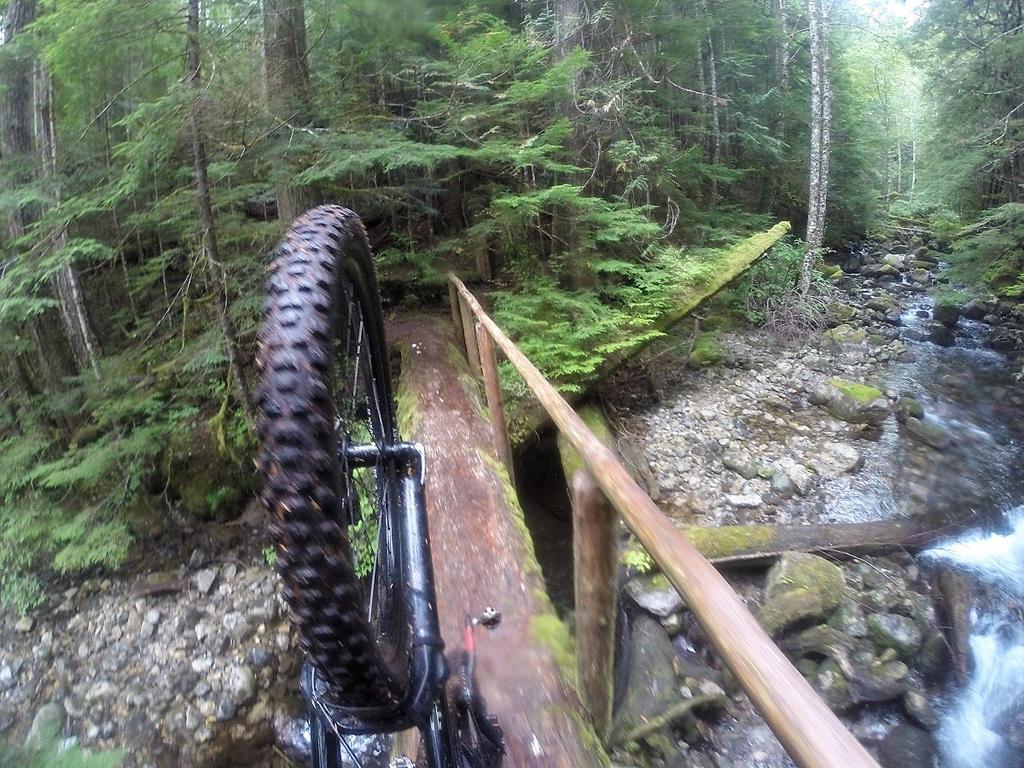bike +  bridge pics-g0127685.jpg