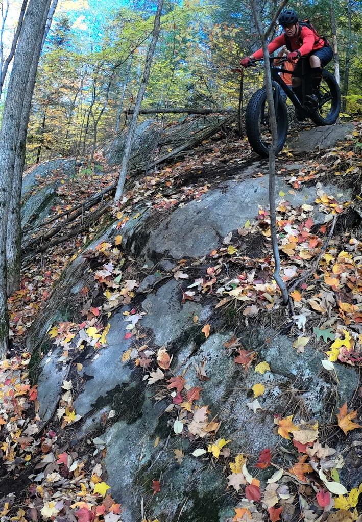 Local Trail Rides-g0161888.jpg