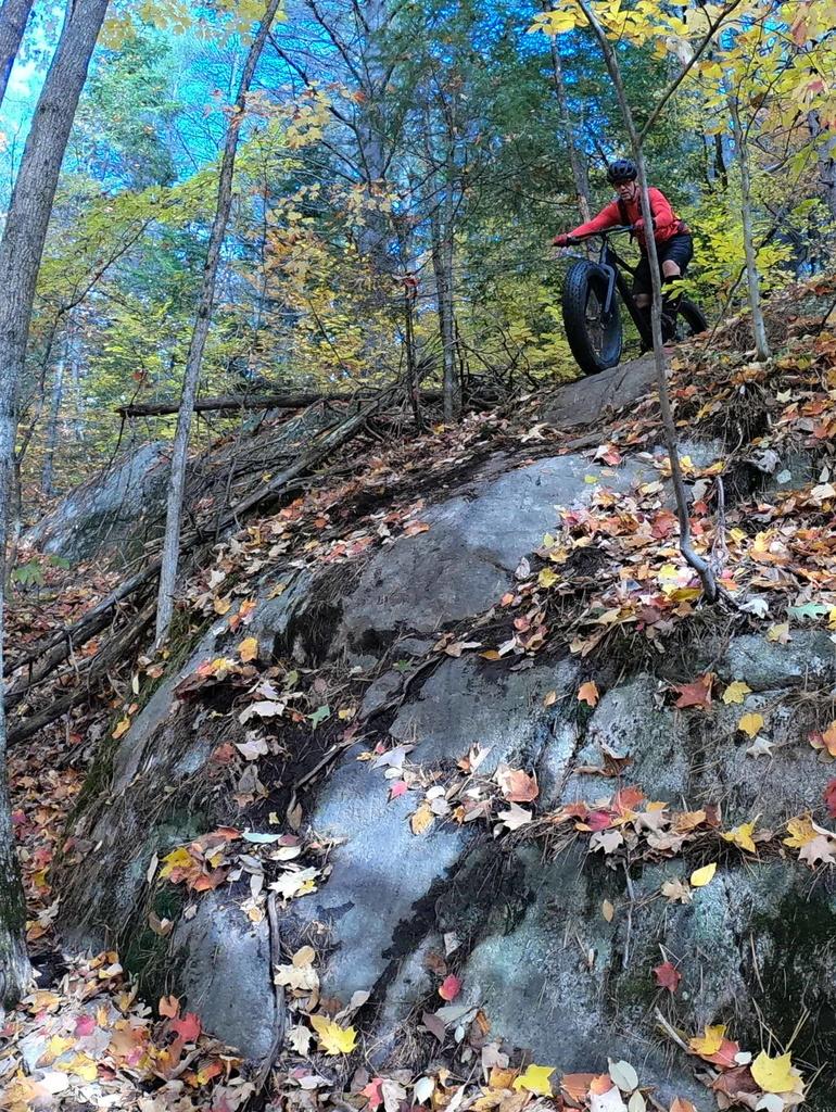 Local Trail Rides-g0181949.jpg
