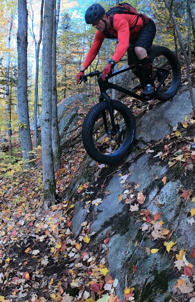 Local Trail Rides-g0201992.jpg