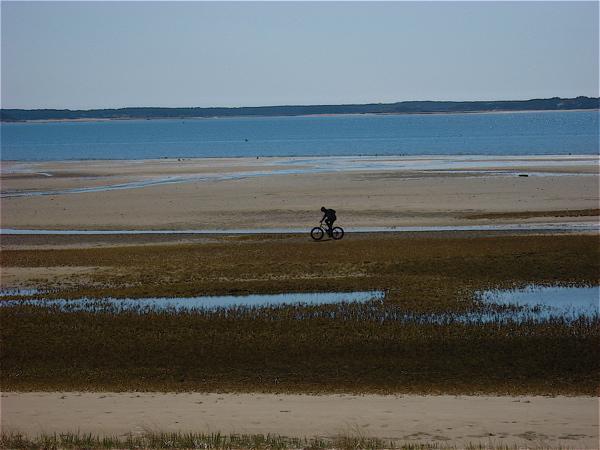 Beach/Sand riding picture thread.-g2.jpg