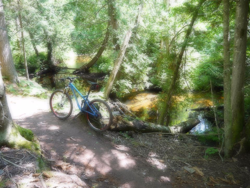 Going to be going to Copper Harbor in Aug.-garden-brook-trail.jpg