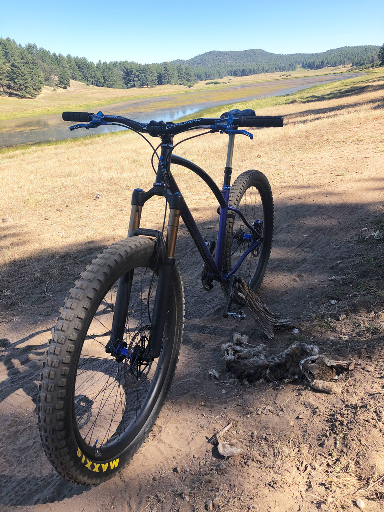 Share your LATEST SS ride...Pics and words-gato1.jpg
