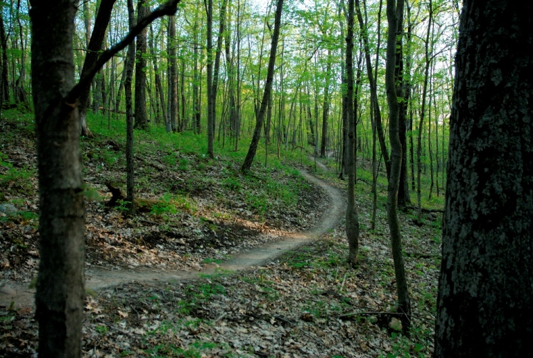 Wisconsin Trail Photos-gbsingle_resize.jpg