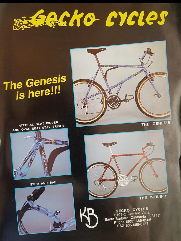 Vintage e-stay bikes-gecko-brosuresm.jpg