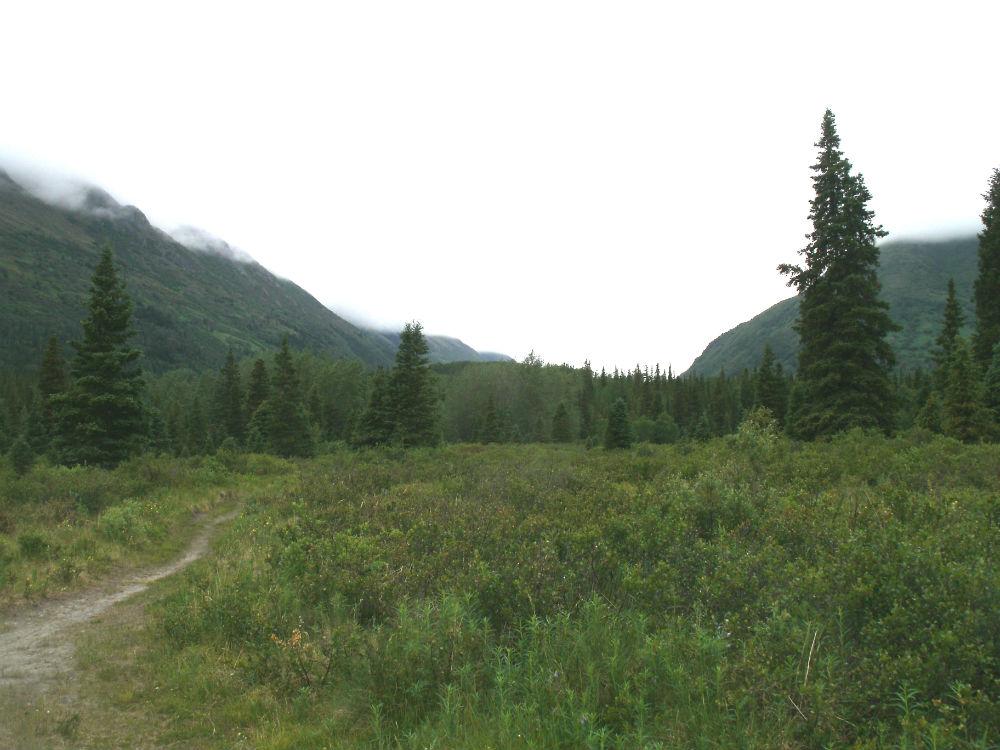 Kenai Peninsula Trail Conditions-gedc0125s.jpg