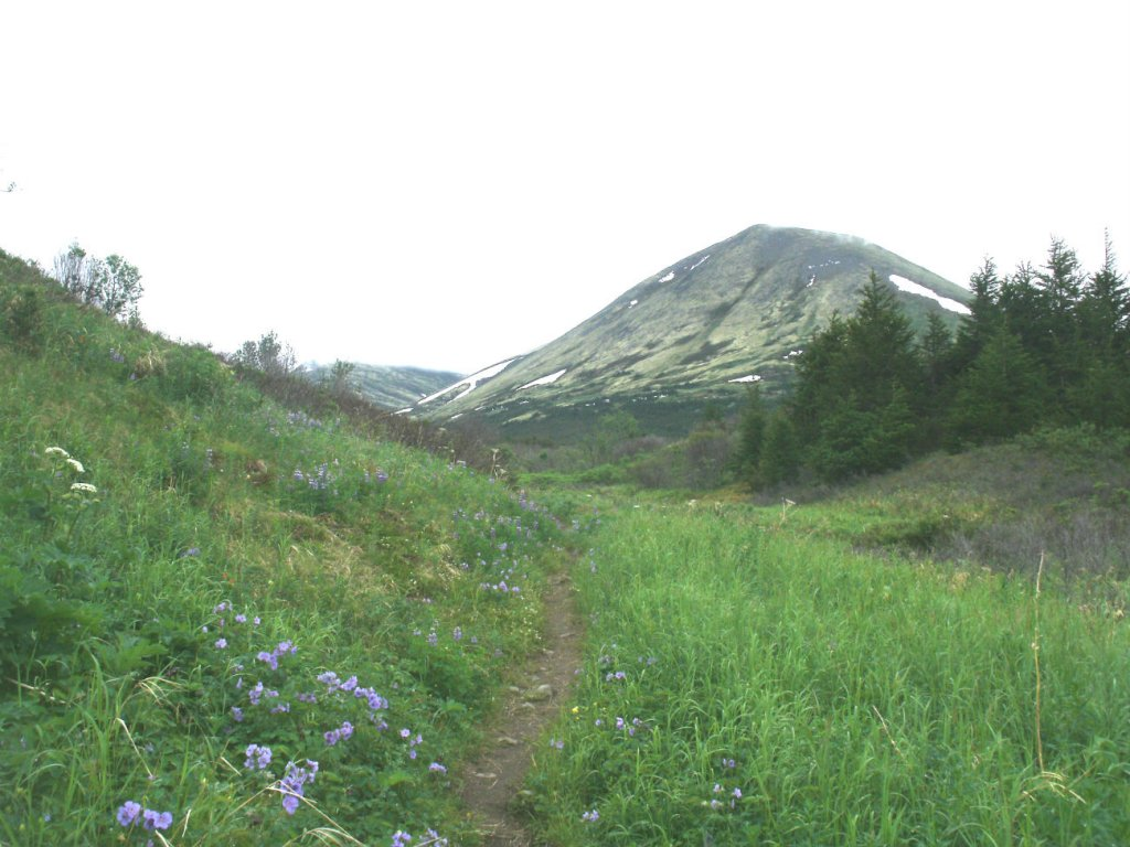 Kenai Peninsula Trail Conditions-gedc0131s.jpg