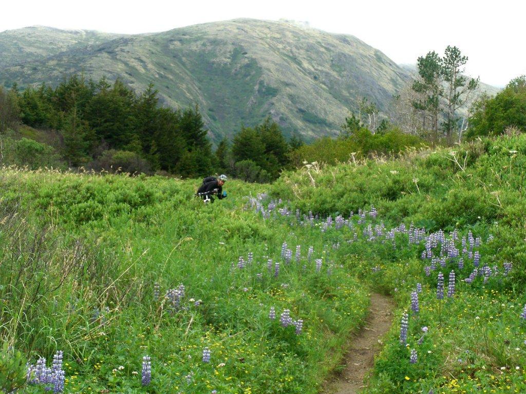 Kenai Peninsula Trail Conditions-gedc0138s.jpg