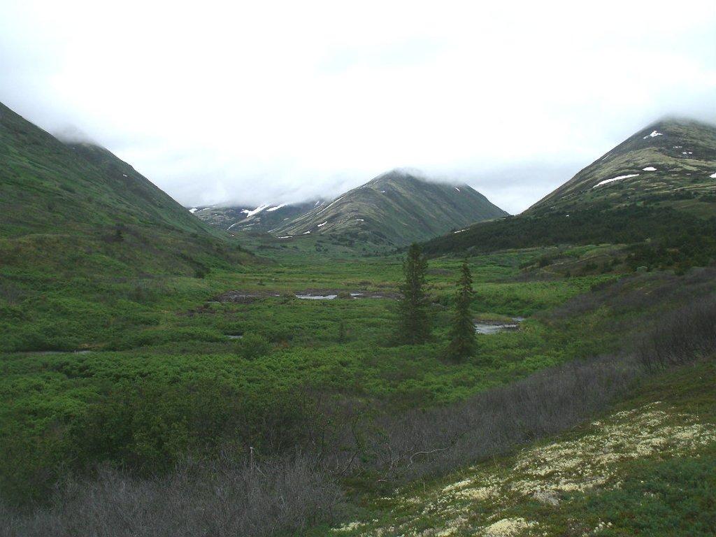 Kenai Peninsula Trail Conditions-gedc0142s.jpg