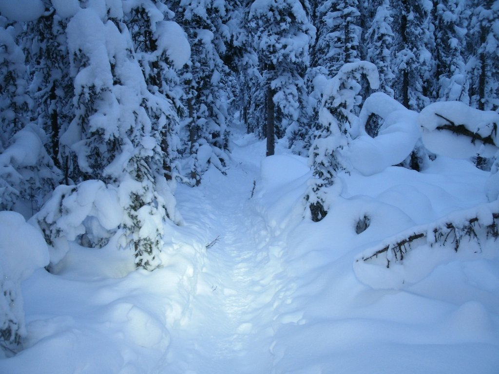 winter...-gedc0287.jpg