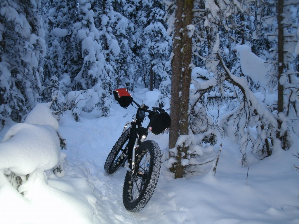 winter...-gedc0289.jpg