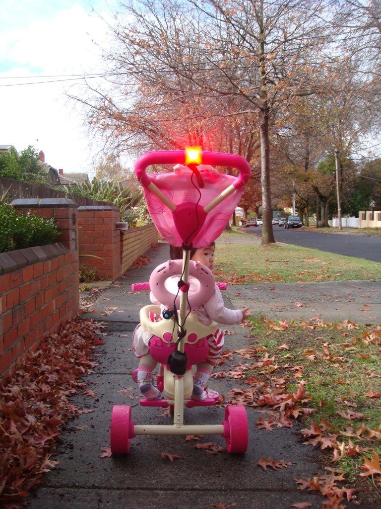 Rear RED blinking light, what to get...!?-geinea-daytime-2.jpg