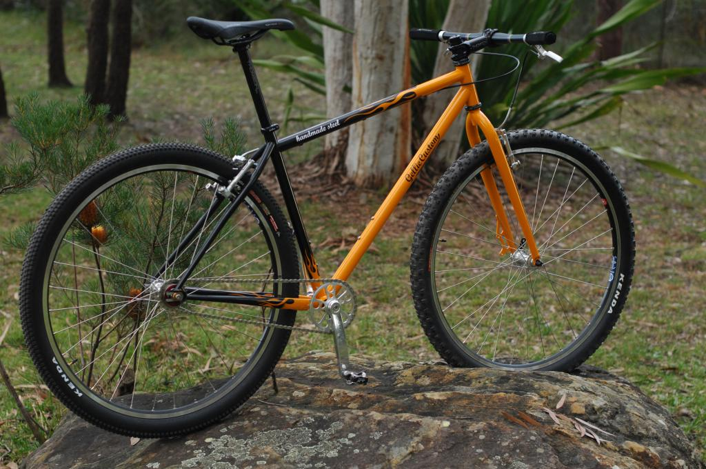 Gellie Custom 29er Singlespeed