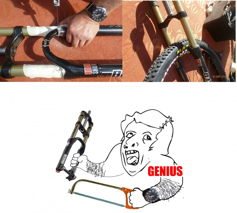 Heckler 26,... now 29er!  :-)-genius-sc.jpg