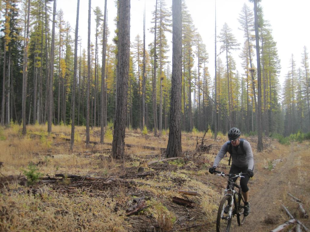 Winter is coming...... get those 44rd rides in NOW!-geoff-knebal-springs-trail.jpg