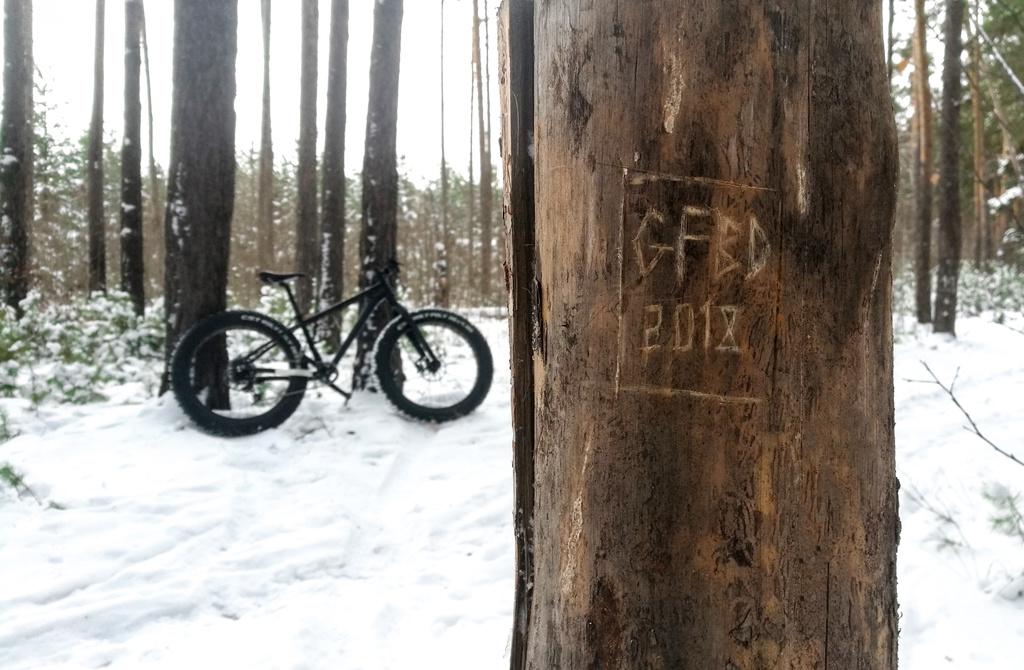 Global Fat-Bike Day. Congratulations from the Russian fat-bikers community.-gfbd2018.jpg