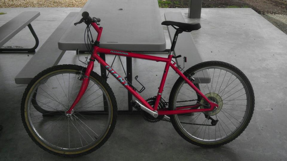 So I picked up a couple of 1990(?) mtbs this week...-giant.jpg