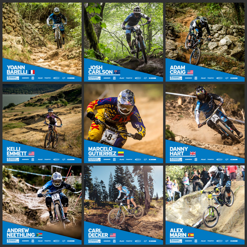 Giant Bicycles Brady Bunch