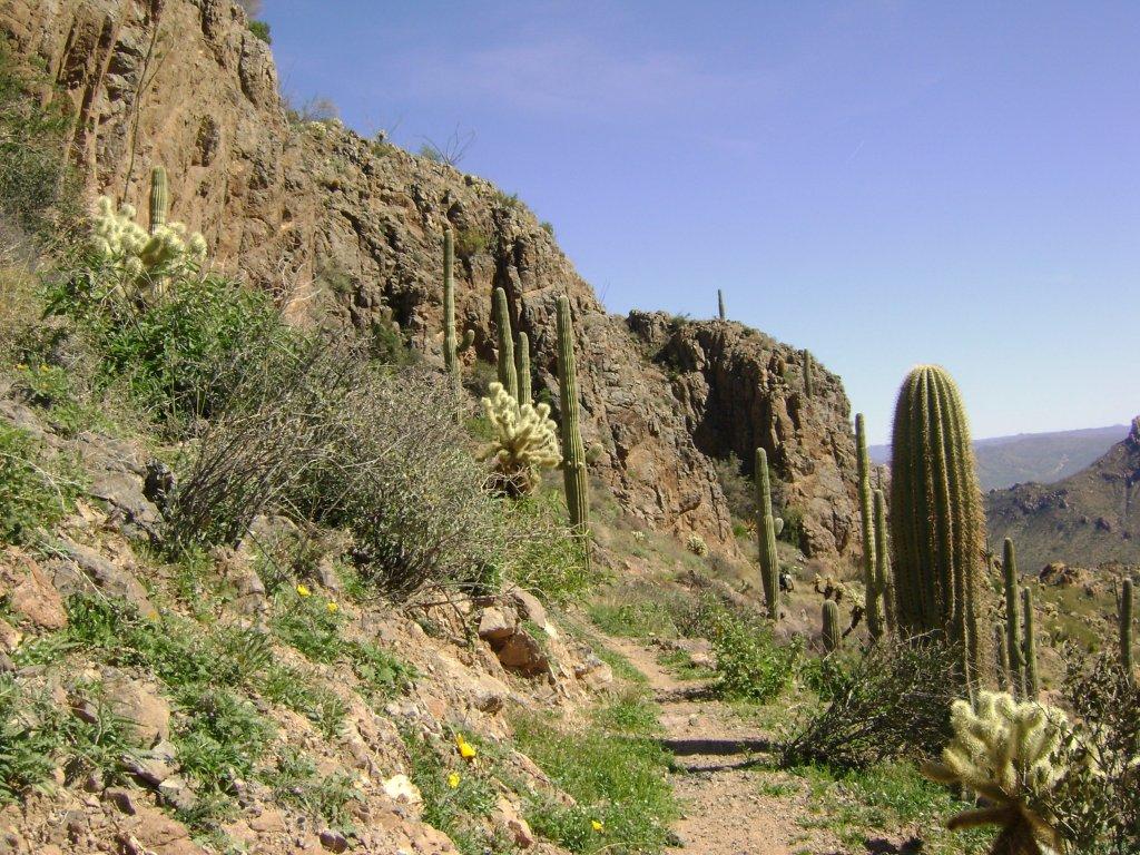 Arizona trail overnighter-gila-bike-pack-028.jpg