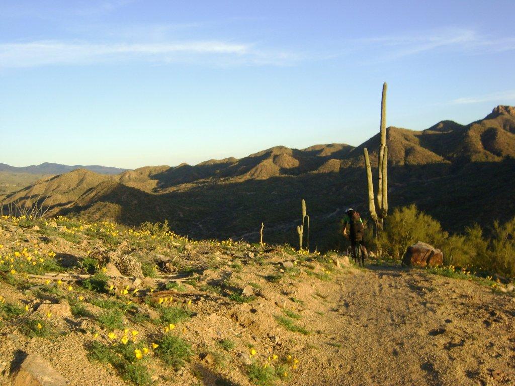 Arizona trail overnighter-gila-bike-pack-049.jpg