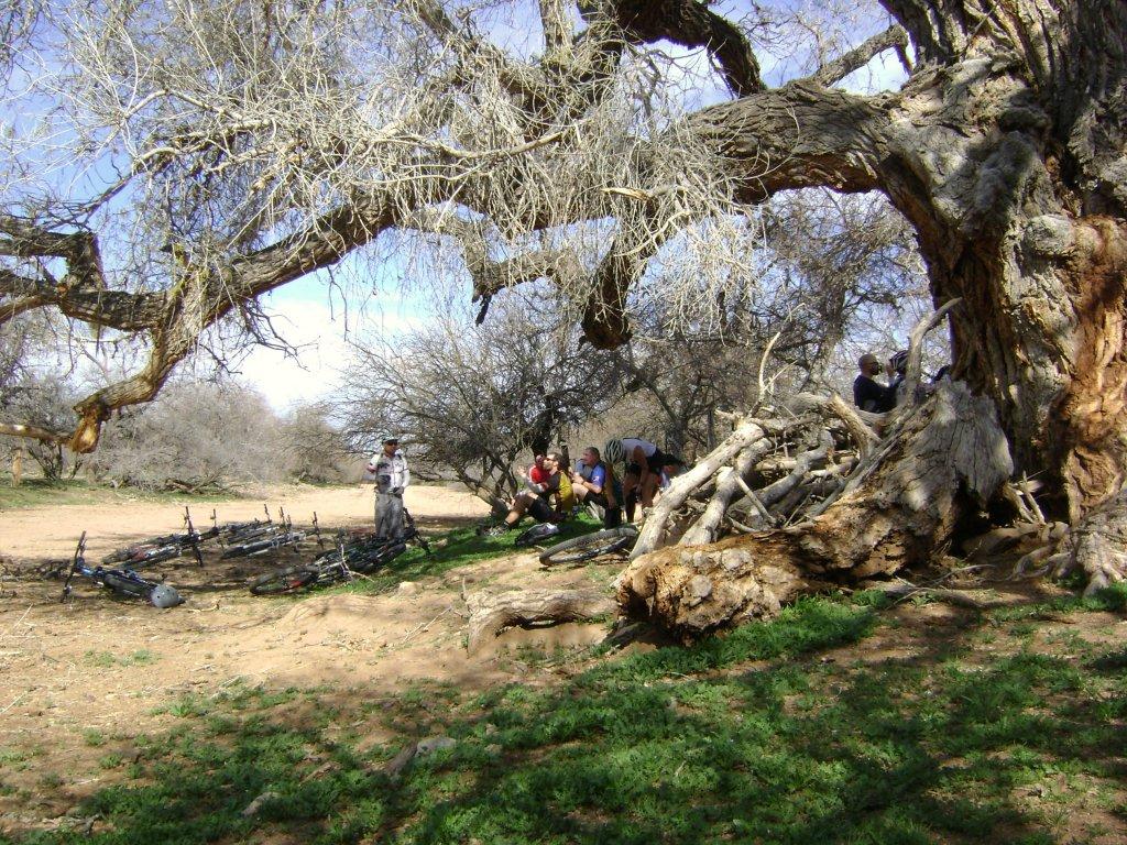Arizona trail overnighter-gila-bike-pack-056.jpg