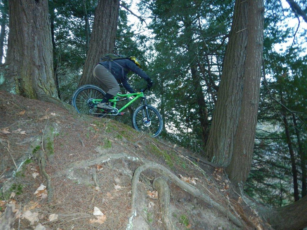 Local Trail Rides-gixqb4h.jpg