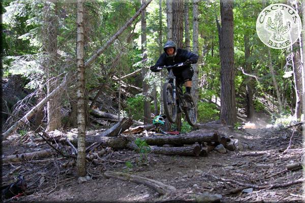 Globe clean up pics-globe-bike-trail-day_0224-2-.jpg