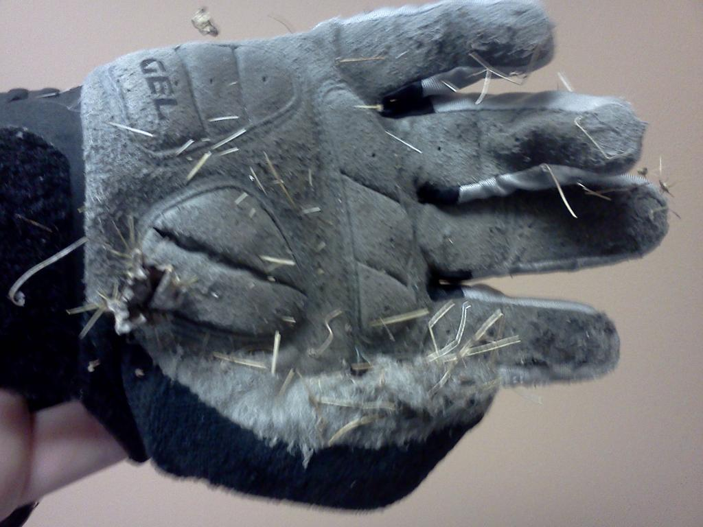 Do You Really need Gloves?-glove.jpg