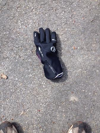 Name:  glove.jpg