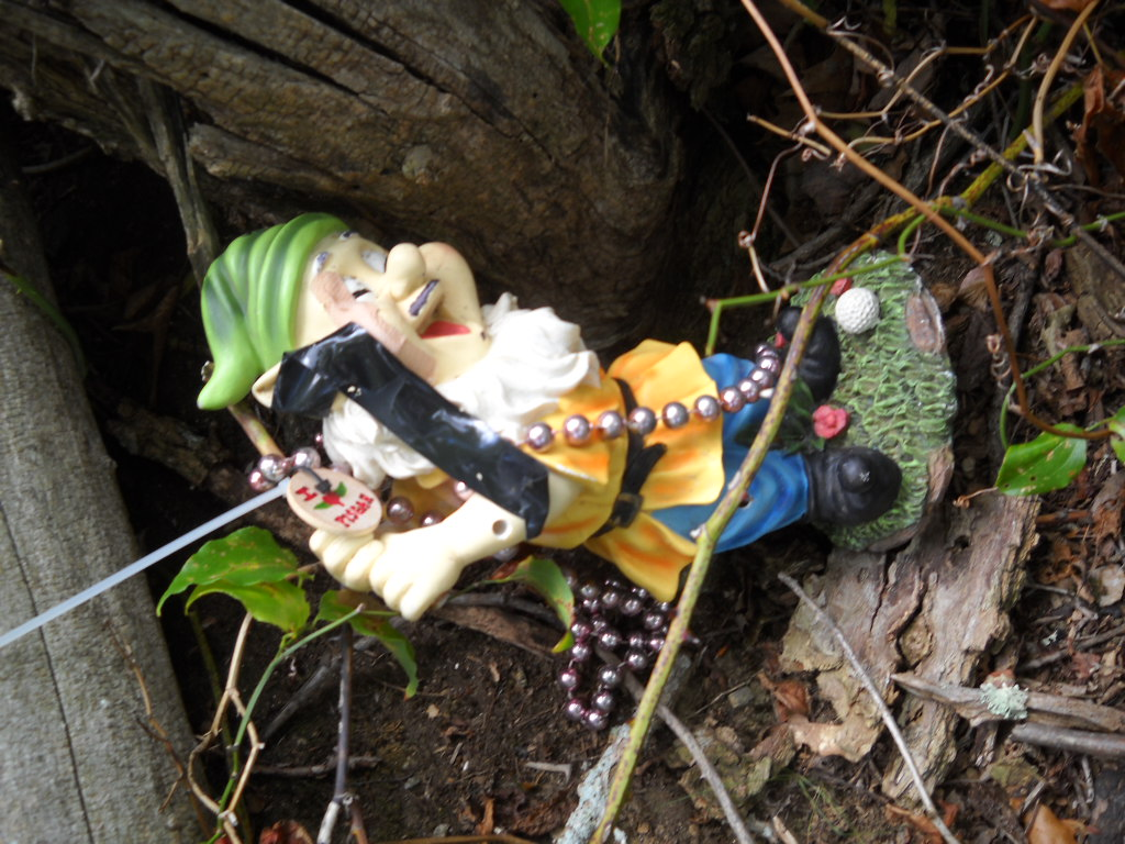 Adventures with the Pisgah Gnome-gnome-003.jpg