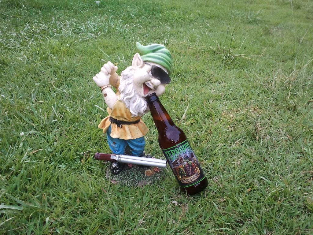 Adventures with the Pisgah Gnome-gnome.jpg
