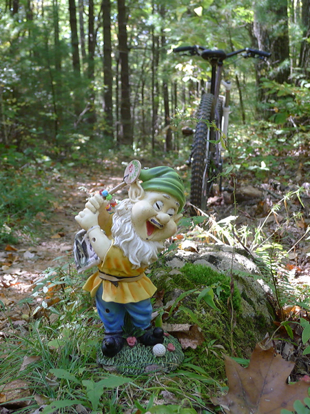 Adventures with the Pisgah Gnome-gnome2.jpg