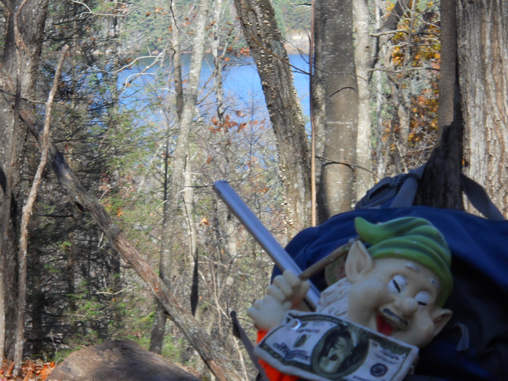 Adventures with the Pisgah Gnome-gnome4.jpg