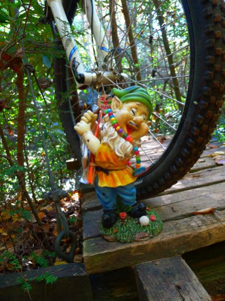 Adventures with the Pisgah Gnome-gnomegnome.jpg