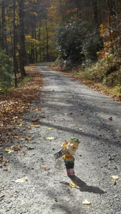 Adventures with the Pisgah Gnome-gnomeo-156.jpg
