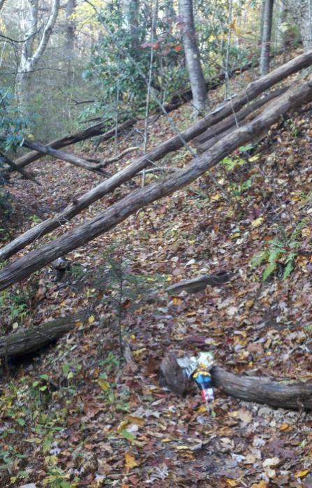 Adventures with the Pisgah Gnome-gnomeo-165.jpg